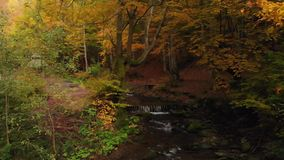 Bergrivier en Waterval in Autumn Forest Stone Cairn stock video