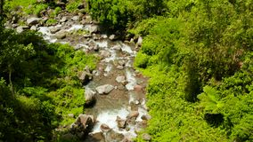 Bergrivier in het regenwoud, Filippijnen, Camiguin stock footage