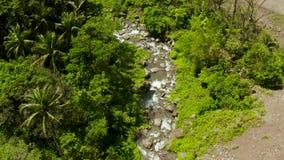 Bergrivier in het regenwoud, Filippijnen, Camiguin stock video
