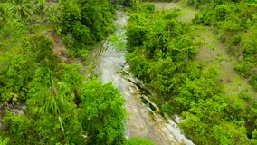 Bergrivier in het regenwoud, Filippijnen, Cebu stock videobeelden