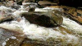 Bergrivier met koud kristalwater Gladde stenen en schuimend koel water rond Lawaai van water stock video
