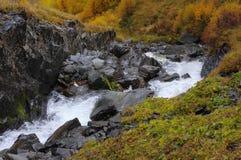 Bergrivier op de rotsen in de gouden herfst Royalty-vrije Stock Foto