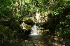 Bergrivier, Pelion, Griekenland stock afbeelding