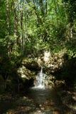 Bergrivier, Pelion, Griekenland stock fotografie