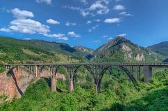 Bergrivier Tara en bos in Montenegro De Balkan Europa Karpatisch, de Oekraïne, Europa Autumn Landscape jn een blauwe hemel Royalty-vrije Stock Foto