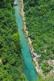Bergrivier Tara en groen bos in Montenegro stock fotografie