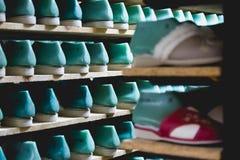 Bergruimte met pantoffelsschoenen op planken in de firma van de familielooppas royalty-vrije stock foto's