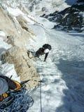 Bergsbestigare på en brant klättrarutt i de franska fjällängarna i Chamonix arkivbild