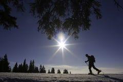 bergsbestigaren skidar Fotografering för Bildbyråer