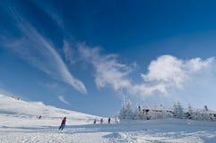 bergsemesterorten skidar Arkivfoto