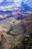Bergsicksackar som är berömda av Grand Canyon Royaltyfri Bild