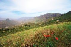 bergsikt Royaltyfria Foton