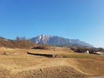 Bergsikt från Cavalese - Dolomites - Italien Arkivfoto