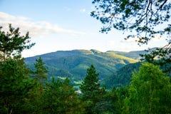 Bergsikt från skogen Arkivfoton