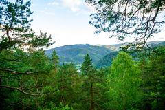 Bergsikt från skogen Royaltyfria Foton