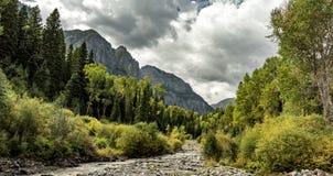 Bergsikt i Colorado med en flod royaltyfri fotografi