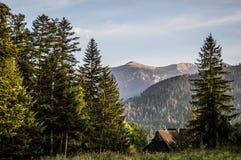 Bergsikt i polska Tatra berg fotografering för bildbyråer