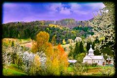 Bergsikt med färgrika trädbeståndsdelar Royaltyfri Foto