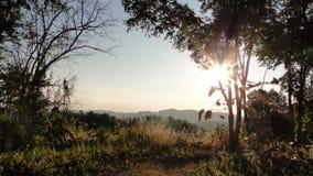 Bergsikt med skugga av träd Royaltyfria Bilder