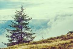 Bergsikt som fotvandrar till och med bergen, panorama Sommar som fotvandrar tur Himmel, moln och naturen i högländerna som fotvan Fotografering för Bildbyråer