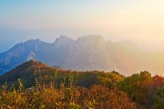 Bergsikten av hösten av det släkt- berget Arkivfoto