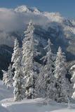 bergsiktsvinter Arkivfoto