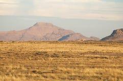 Bergskedja Bektau- Ata Område Bektau- Ata Centrala Asien Kaza Fotografering för Bildbyråer