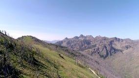 Bergskedja för sju jäklar i den centrala Idaho flyg- sikten längs kant lager videofilmer
