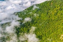 Bergskog i himmel arkivfoton