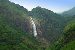 Bergskogen med vattenfallet Arkivfoto