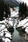Bergskogflod i vinter arkivfoton