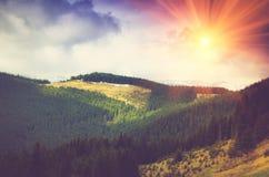 Bergskoglandskap under aftonhimmel med moln Arkivfoton