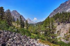 Bergskogsmarklandskap järnvägen för fotoet för beginningårhundradet körde den östliga här imperialistiska gjorda siberia drev xx Fotografering för Bildbyråer