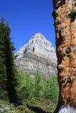 bergskysikt Arkivfoton