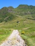 Bergslinga Arkivfoto