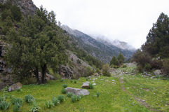 Bergslinga i klyftan Dugoba Arkivbilder