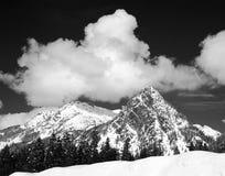 bergsnoqualmie washington Royaltyfri Foto