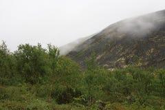 Bergsommarlandskap av den polara regionen Royaltyfria Foton