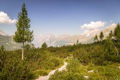 Bergspitze an einem Sommertag Stockbild