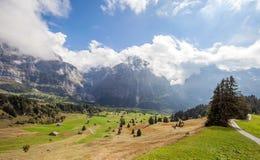 Bergspitzen, Ströme und Wiesen in Grindelwald, die Schweiz Stockbild