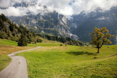 Bergspitzen, Ströme und Wiesen in Grindelwald, die Schweiz Stockfoto