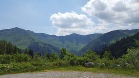 Bergssida på en solig dag Arkivbild