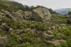 Bergssida som täckas med moln Royaltyfria Bilder