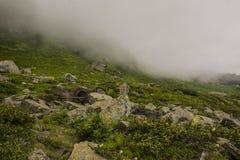 Bergssida som täckas med moln Arkivfoto