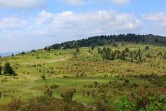 Bergssidabakgrund Virginia Grayson Highlands Arkivfoton