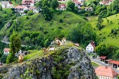 Bergstad en geiten Royalty-vrije Stock Afbeelding