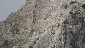 Bergsteiger auf einem Felsen stock video footage
