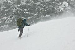 Bergsteiger, der die Oberseite in einem Schneesturm anstrebt Stockbild