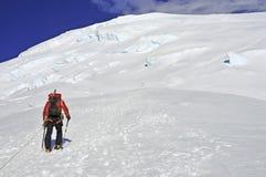 Bergsteiger hoch auf dem Mount Rainier Stockbilder