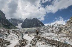 Bergsteiger im Berg Lizenzfreie Stockbilder